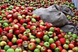 Apfelhaufen
